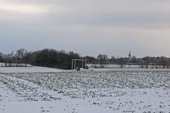 Winter/Hoerbelt: Lindenbaum, gerahmt Oberursel, Germany 2017